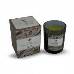 Green Tree Californian White Sage Scented Candle